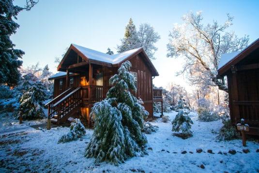 Evergreen Cabin in Winter (Kim Carroll)