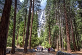 Lower Yosemite Falls Trail (Kim Carroll)